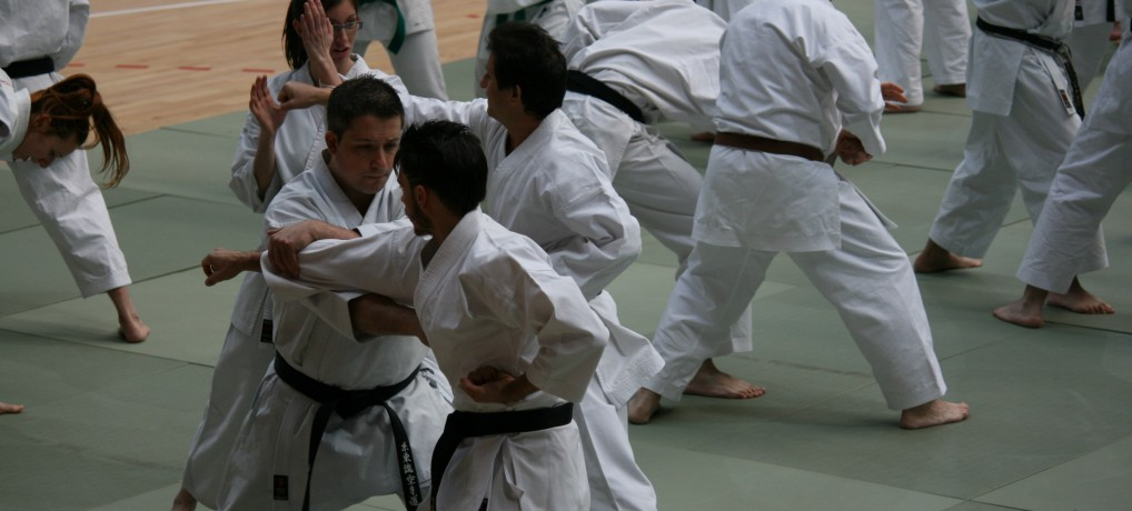 Curso Karate Solidario Torrejón